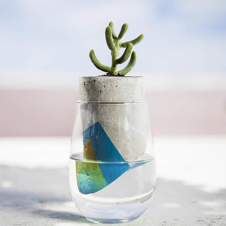 Parasita Plant Container by Csar Llanos