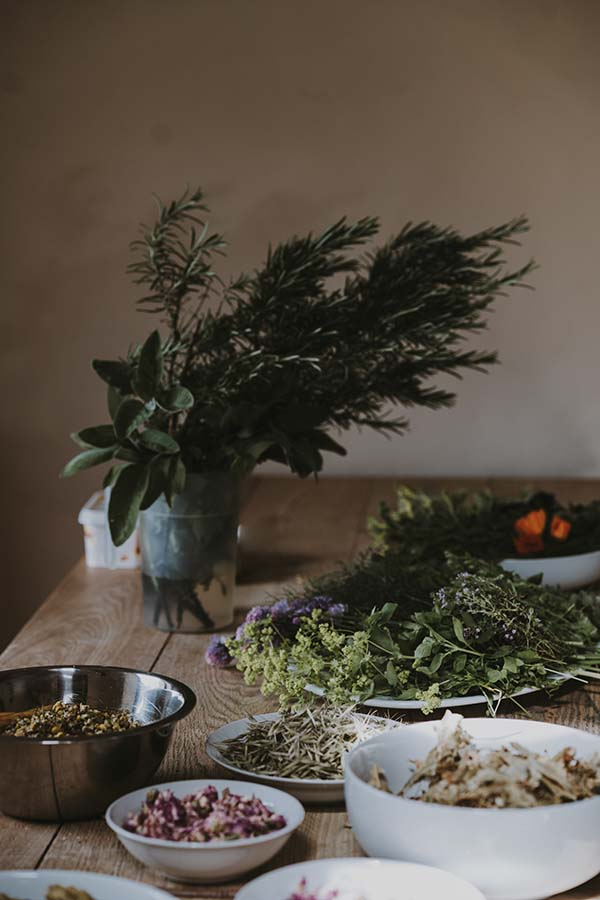 Five Reasons to Consider Trying Alternative Remedies and Therapies