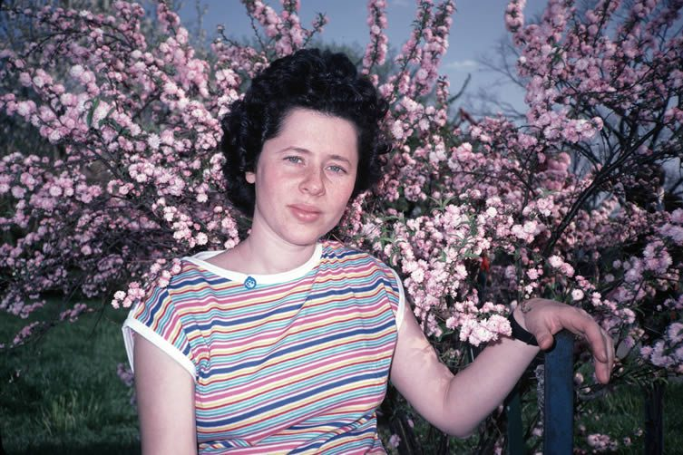 Karen and Cherry Blossoms, from the book Mommie