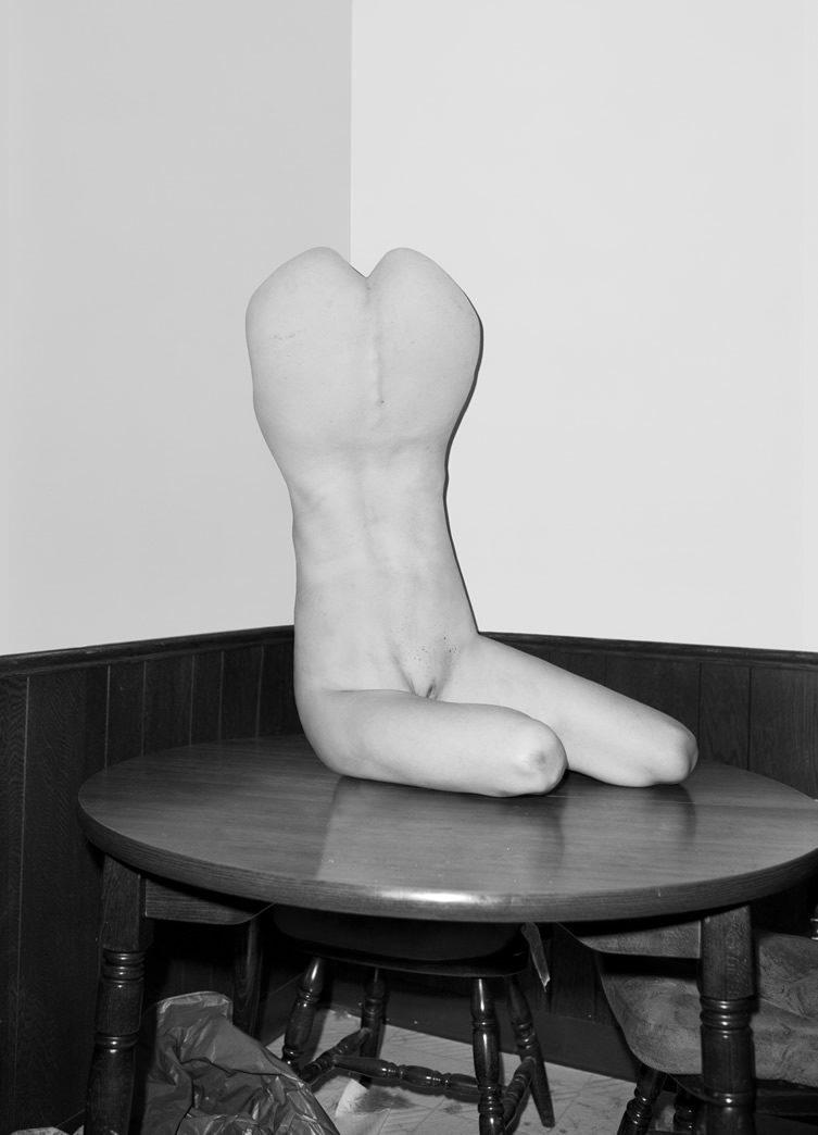 Asger Carlsen — Hester, at V1 Gallery Copenhagen
