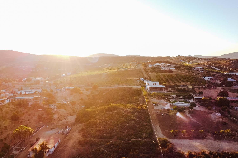 Explore las bodegas en el Valle de Guadalupe