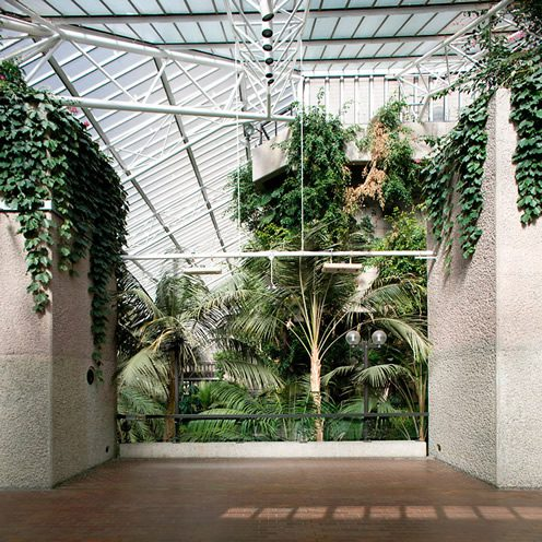 Forgotten Spaces: The Barbican Conservatory