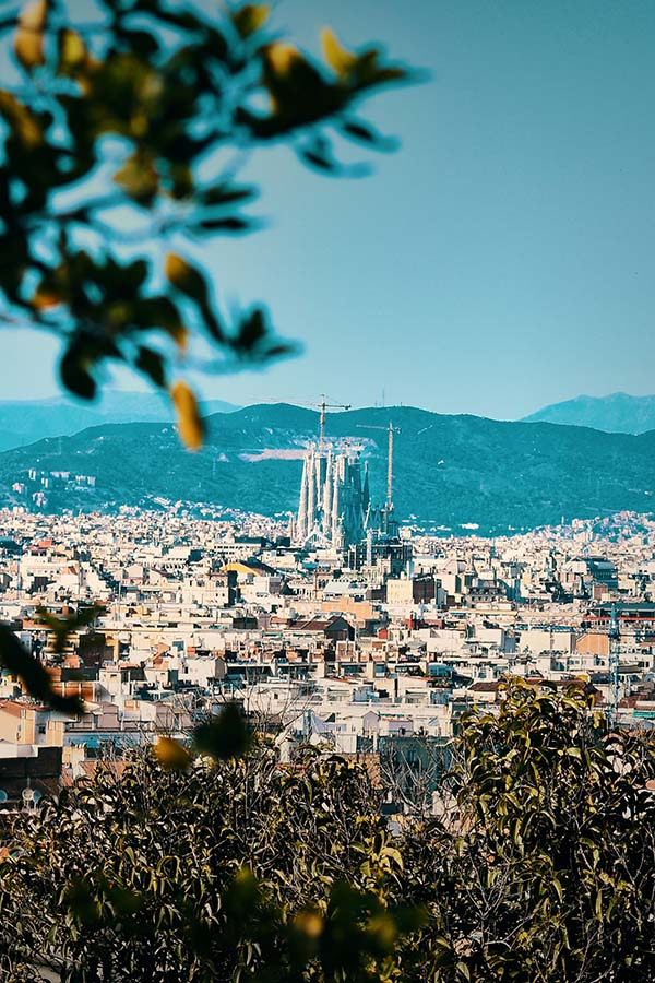 Barcelona Lockdown: considering new ideas to stay fit and eat well