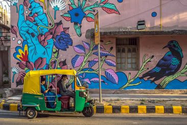 Bicicleta Sem Freio for St+art India
