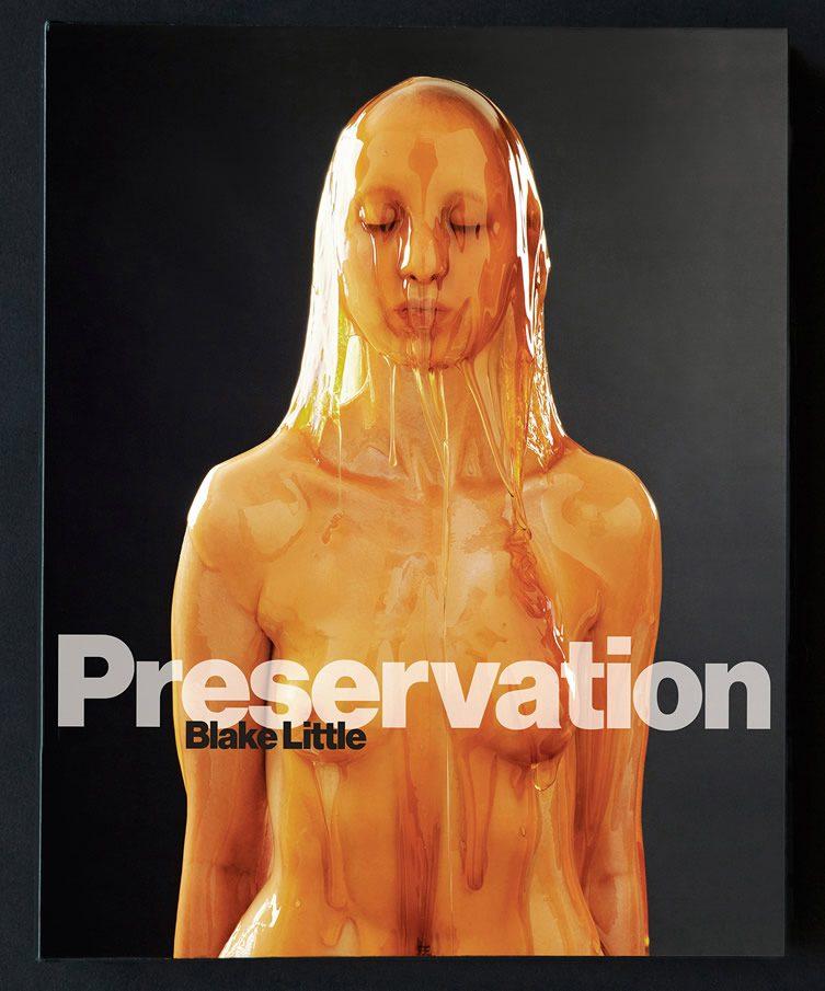 Blake Little — Preservation