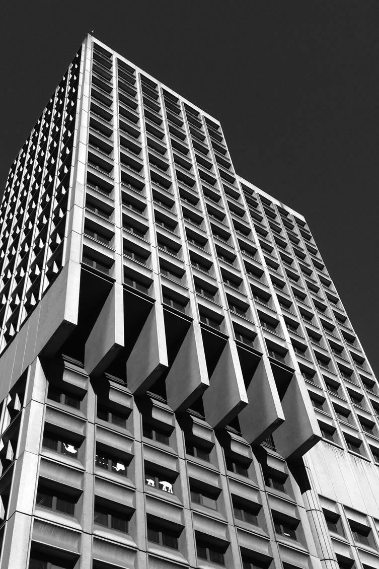 Sydney Town Hall House Sydney