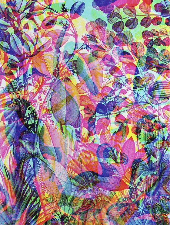 La Selva: RGB Black Series; Carnovsky