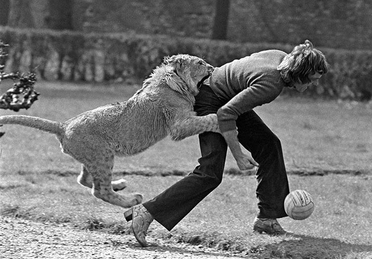 Christian tackles John during a game of football in the Moravian Close, an image that won Derek the 1970 Ilford World Press Award for Best Feature Picture. © Derek Cattani