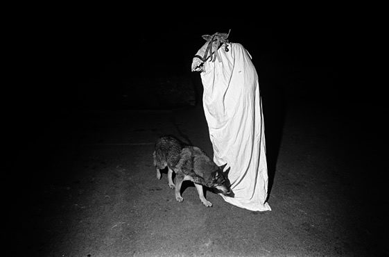 Collective Observations: Folklore and Photography from Benjamin Stone to Flickr