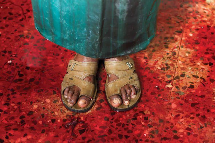 Arun Vijai Mathavan (Ahmedabad, India) Untitled