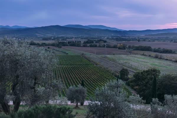 Conti di San Bonifacio Wine Resort Tuscany, Maremma