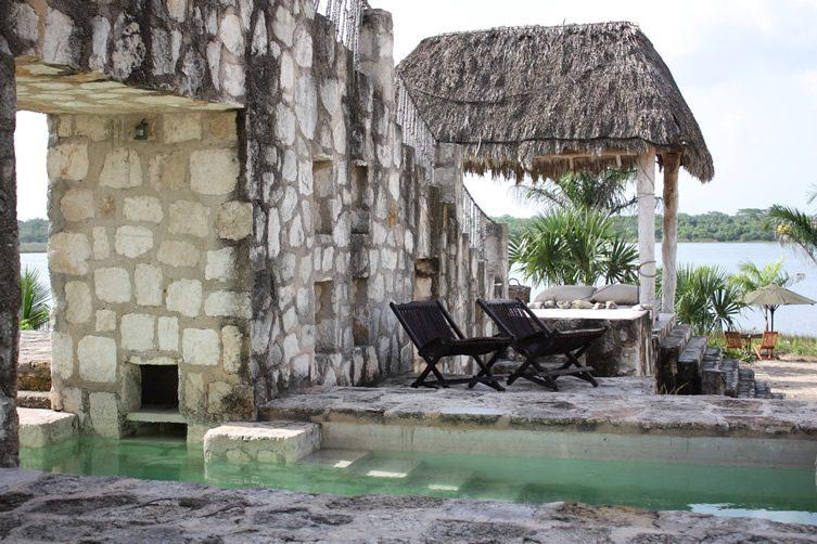 Coqui Coqui, Yucatan Peninsula, Mexico