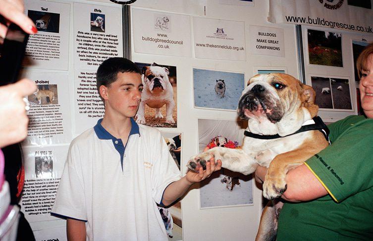Sipke Visser — Doggies
