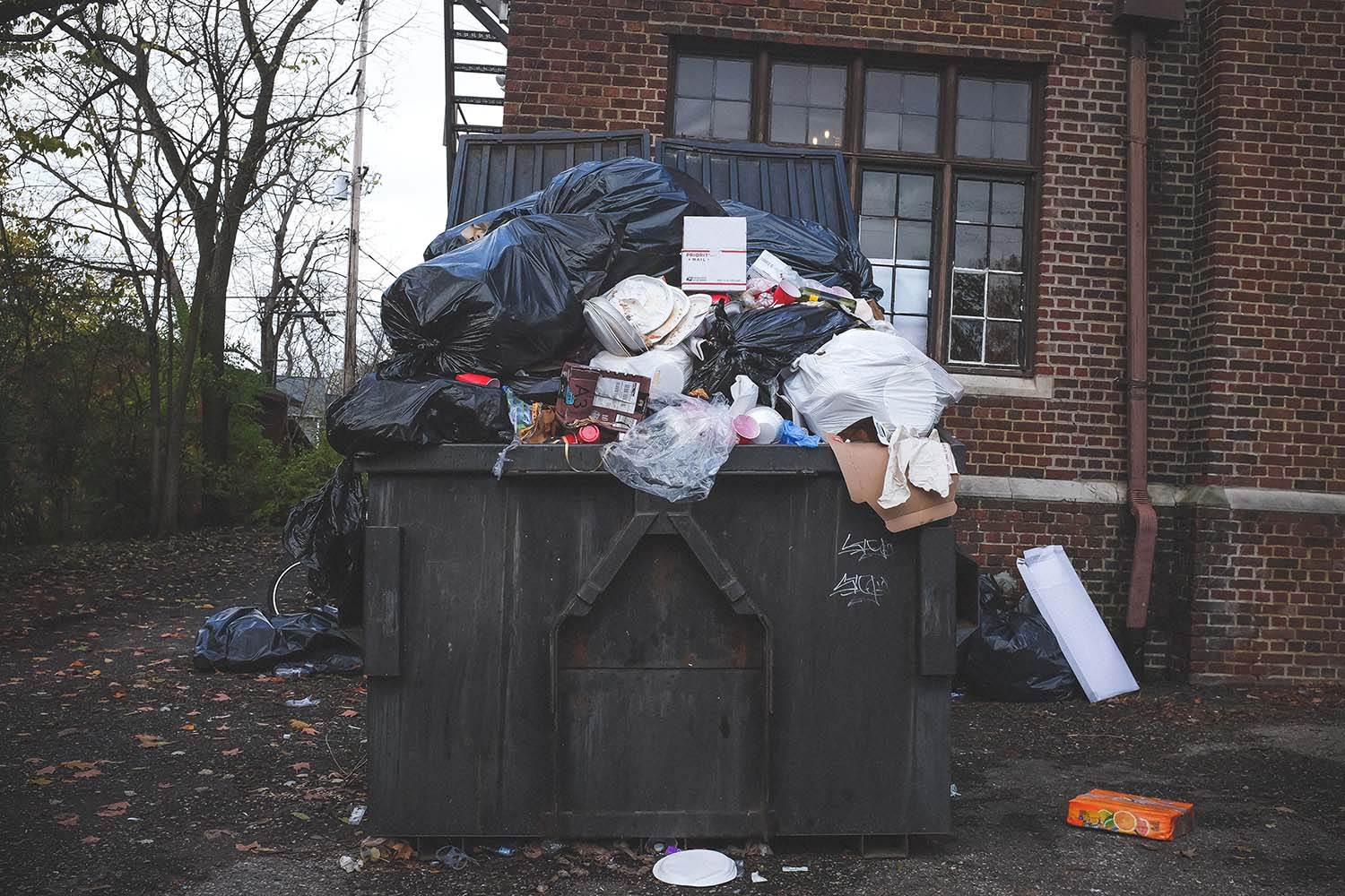 How to Choose a Dumpster Rental Company