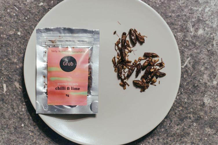Eat Grub: Shami Radia and Neil Whippey