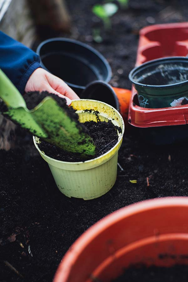 How To Start An Eco-Friendly Lifestyle, Sustainable Living