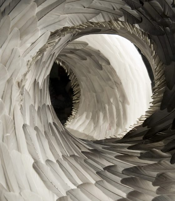 Kate MccGwire's Feather Sculptures