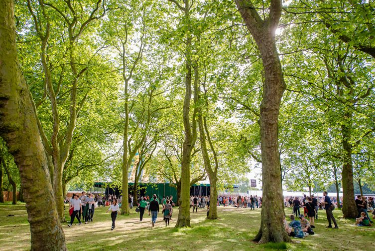 Field Day 2014 Review — Victoria Park, London