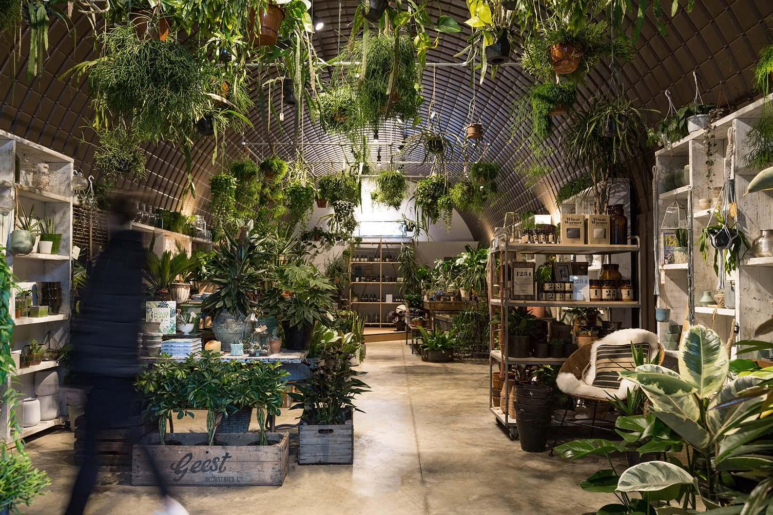 Forest Deptford, London Plant Shop