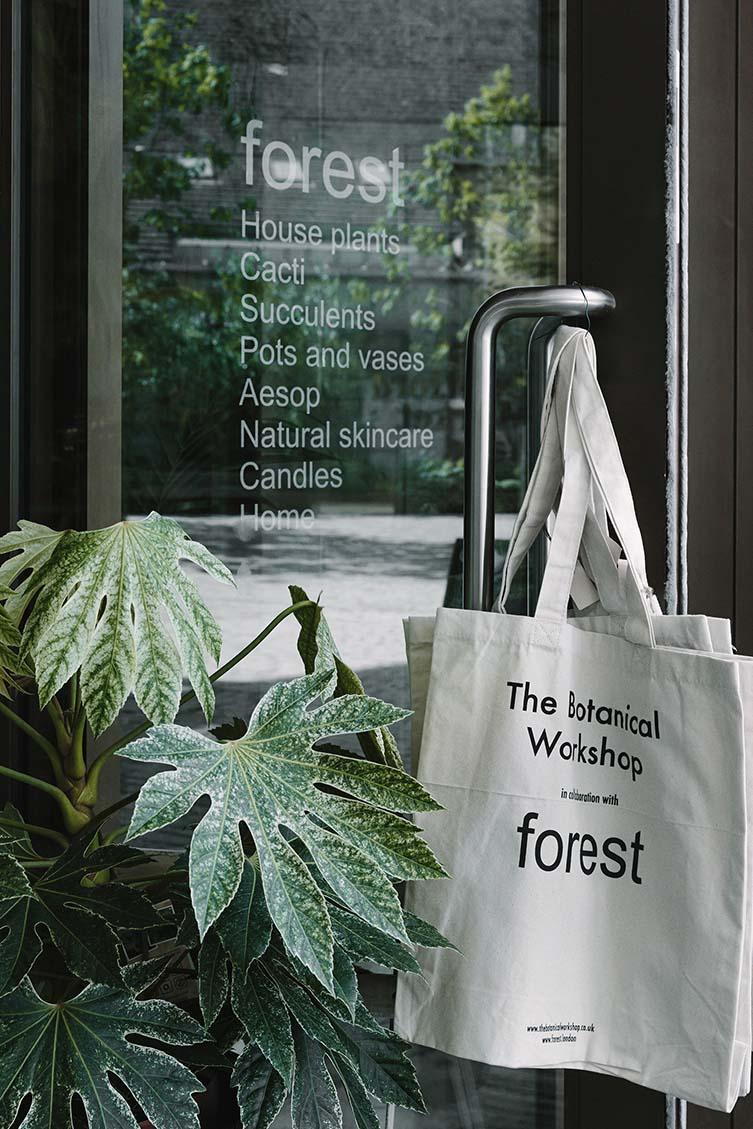 Forest Deptford