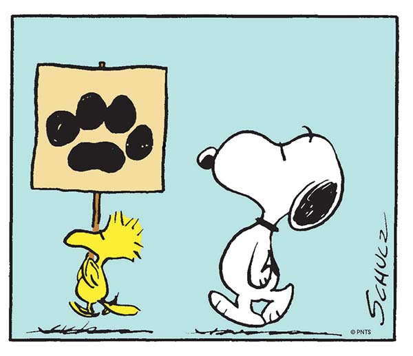 GOOD GRIEF, CHARLIE BROWN! Celebrating Snoopy and The Enduring Power of Peanuts