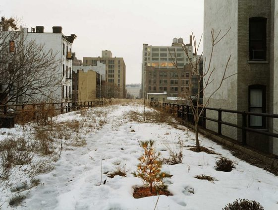 The High Line, New York
