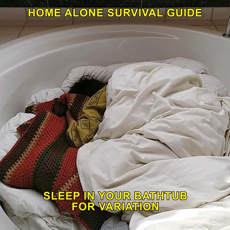 Max Siedentopf, Home Alone Survival Guide Quarantine Things to Do
