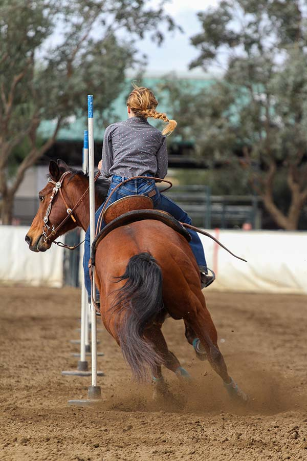 Learn More About Horse Riding Clothing and Equipment