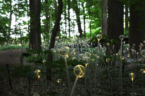 Bruce Munro at Longwood Gardens