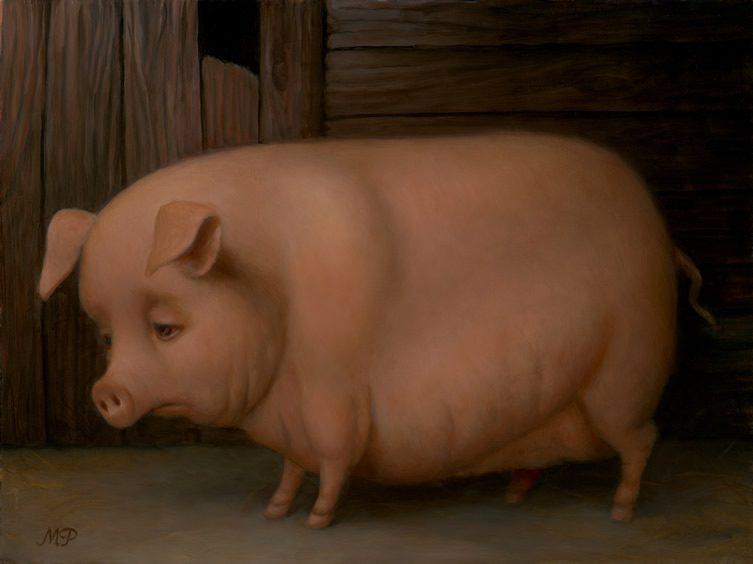 заднем картинки плачущей свинки патрон при помощи