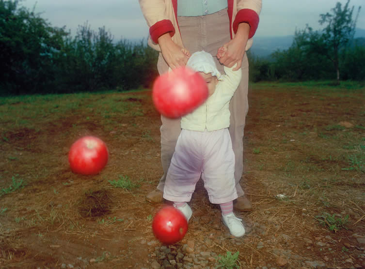 Michael E. Northrup, Dream Away Photo Book, Published by Stanley Barker