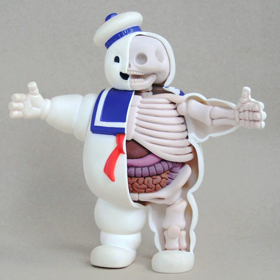 Jason Freeny's Anatomical Sculptures