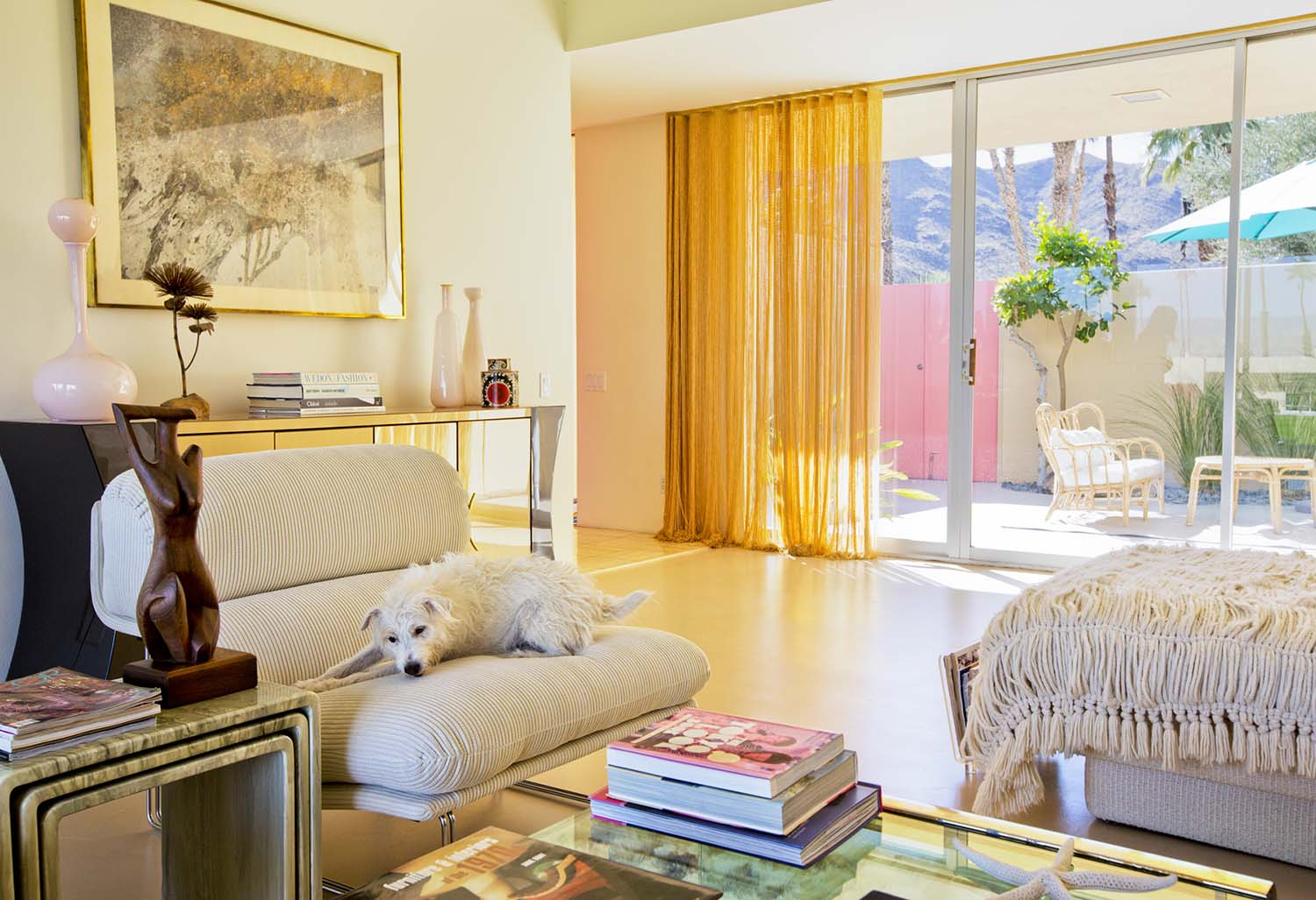 Nancy Baron, Palm Springs: Modern Dogs at Home