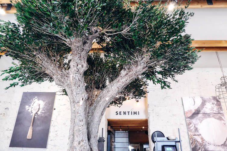 Sentimi Restaurant Nice