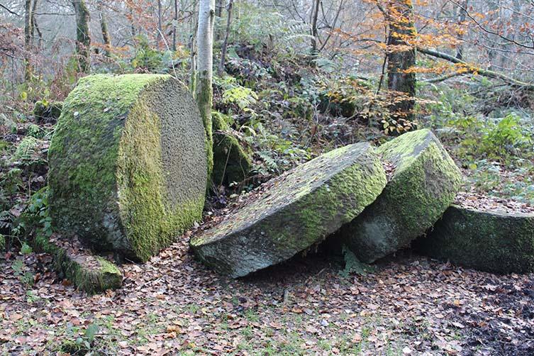 Stanton Moor Forest, England