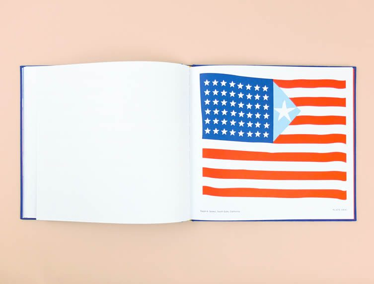 Old Glory, Alternative Designs for the American Flag