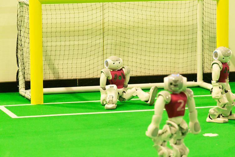 RoboCup, Robot Football's World Cup