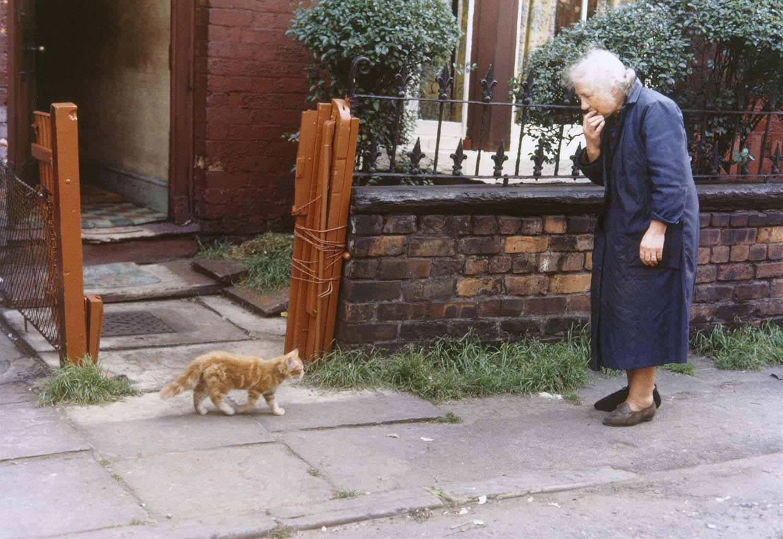 Shirley Baker Manchester, 1965