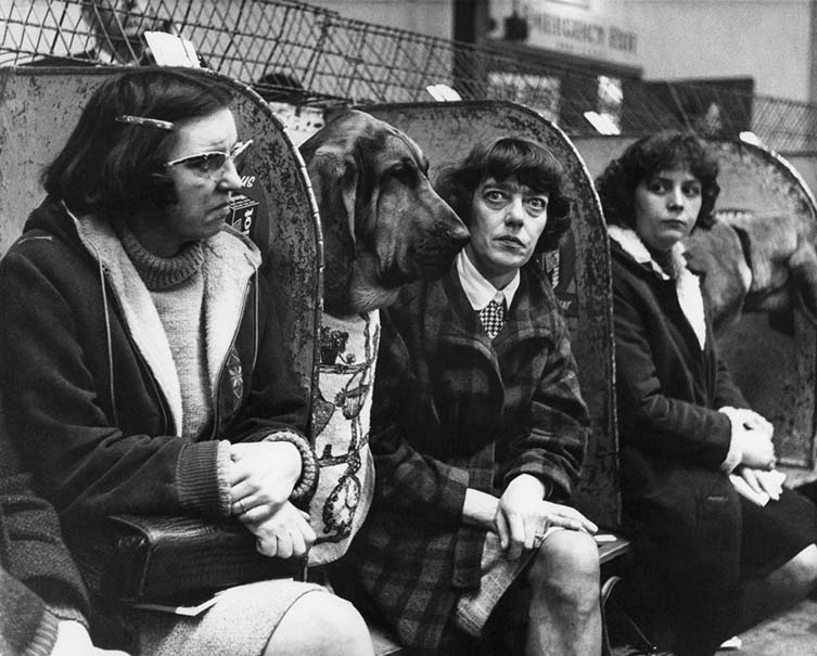 Shirley Baker, Dog Show 1961—1978 Published by Hoxton Mini Press
