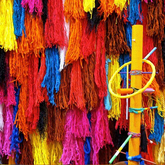Andean Ancestors