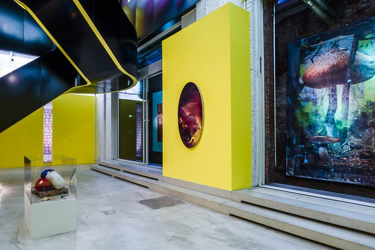 Spaced Out: Migration to the Interior at Red Bull Studios New York