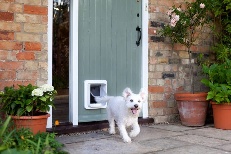 SureFlap Microchip Pet Door Connect, App-controlled Microchip Pet Door