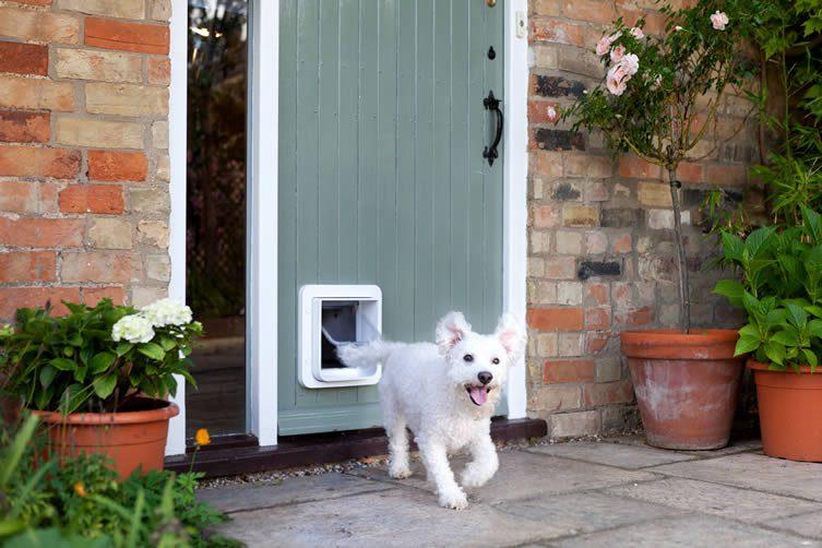 SureFlap Microchip Pet Door Connect, App-controlled Microchip Pet Door