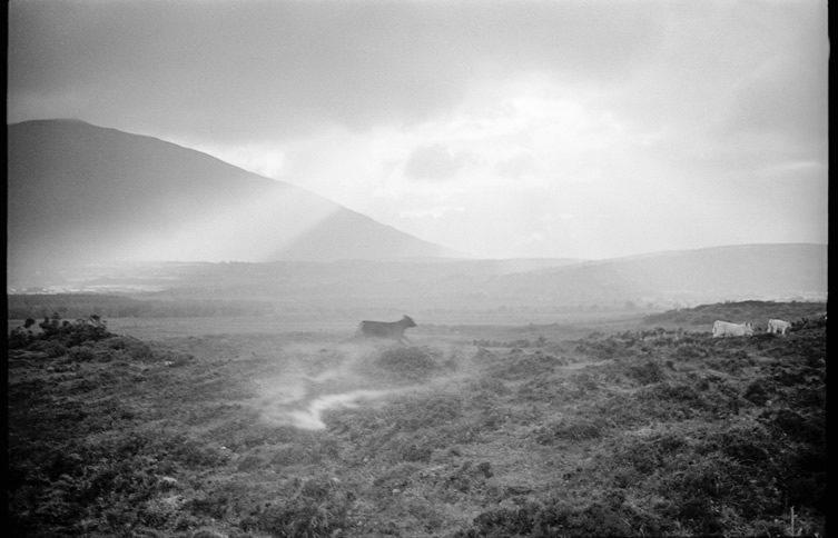 Tom Wood — Landscapes at MOSTYN, Llandudno