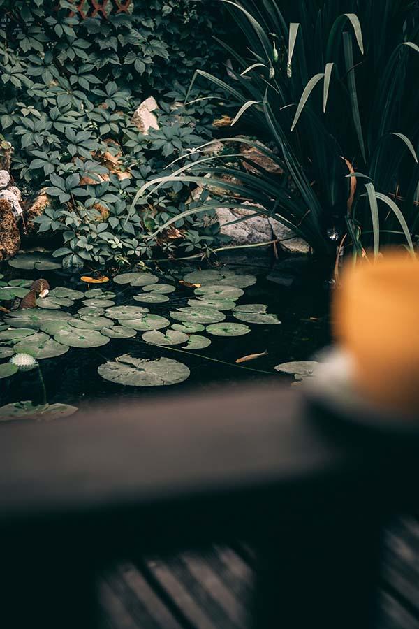 Eight Brilliant Ways to Transform Your Backyard