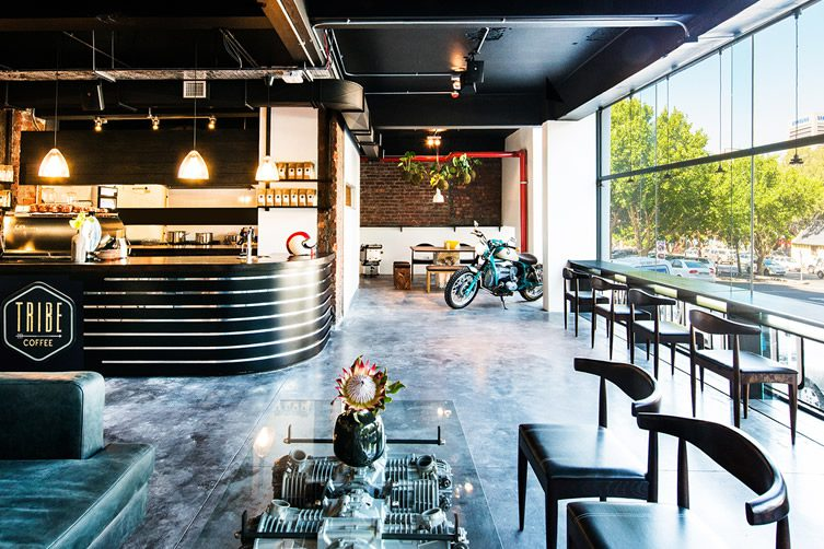 tribe coffee roasting cape town