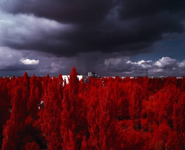 The Unseen: An Atlas of Infrared Plates by Edward Thompson