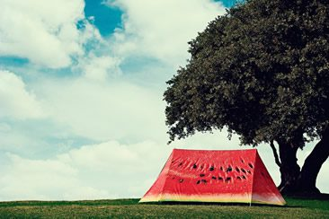 What a Melon Tent, by FieldCandy