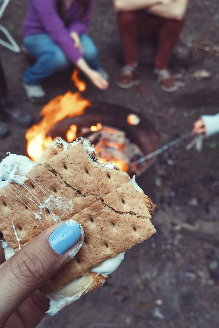 S'mores on the go