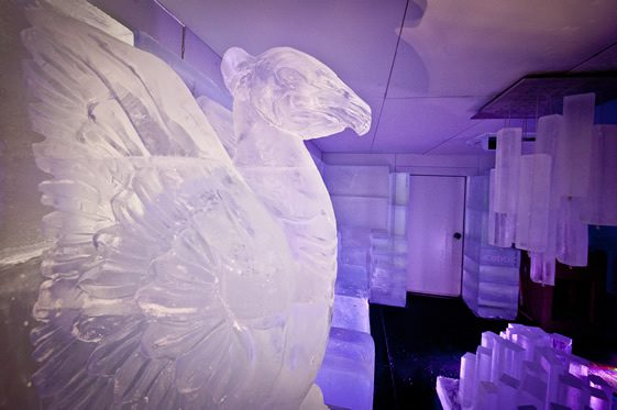 #IceFestival; Liverpool ONE
